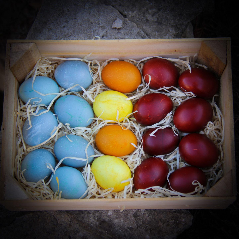 """alt=""""oua vopsite natural cu coji de ceapa"""