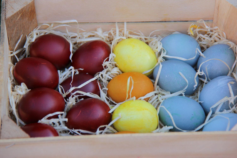 Oua de Paste vopsite natural in 3 culori